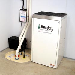 An ENERGY STAR® Rated basement dehumidifier installed in a home in Albany