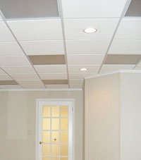 Basement Ceiling Tiles for a project we worked on in Ballston Spa, New York